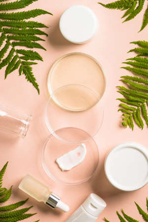 Glass petri dish with cosmetic products and green plants Banque d'images