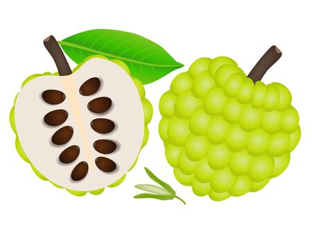Whole sugar apple and half with a flower on a white background.