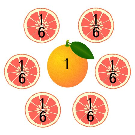 Mathematical games for children. Study the fractions numbers, example with of a grapefruit.