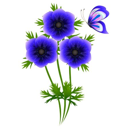 A bouquet of blue anemones with a butterfly on a white background.