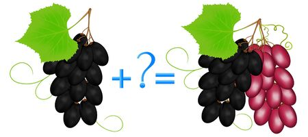 Action relationship of addition, examples with grapes.
