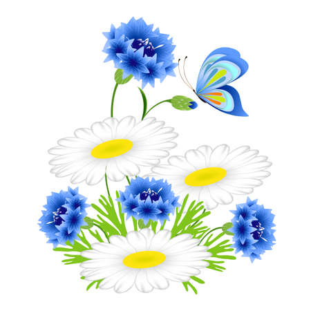 Blue cornflowers and chamomiles with a butterfly on a white background.
