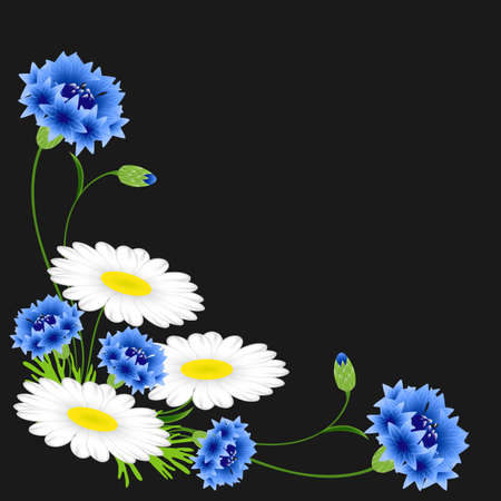 Corner with blue cornflowers and chamomiles on a black background.