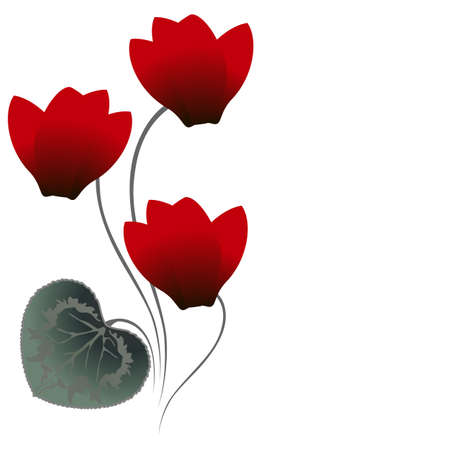 Floral background with red cyclamens.