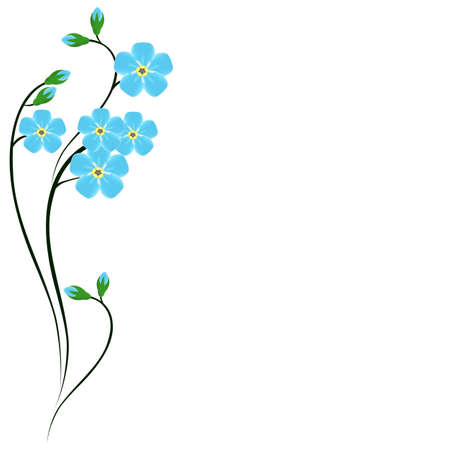 Floral background with forget me not.