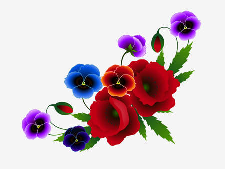 Composition of red poppies and pansies on a white background.