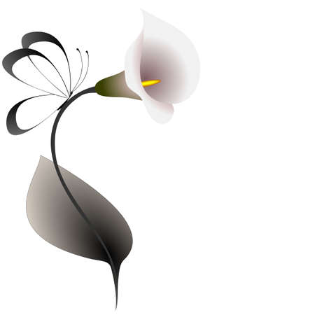 Floral background with calla lilies and butterfly.