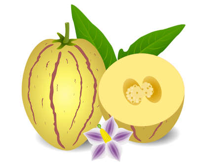 Whole pepino melons and half with a flower on a white background.