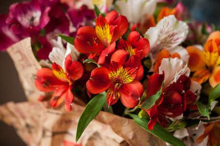 alstroemeria: bouquet of colorful flowers alstroemeria Stock Photo