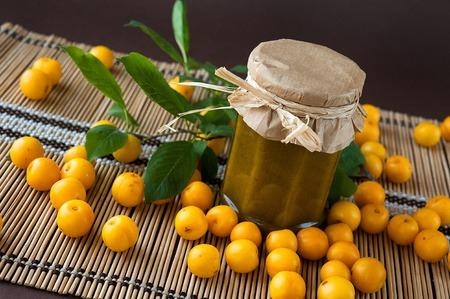 Delicious beautiful Georgian sauce tkemali of heavy plum