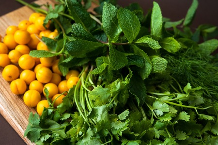 Herbs for cooking tasty sauce tkemali Stock Photo
