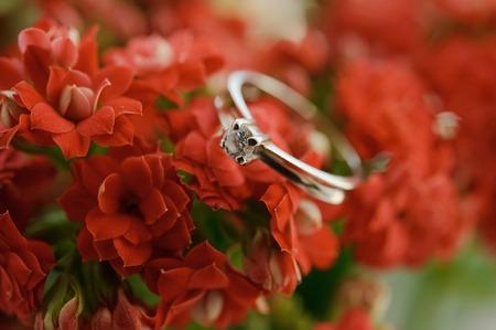 Beautiful wedding rings close up shot Stock Photo