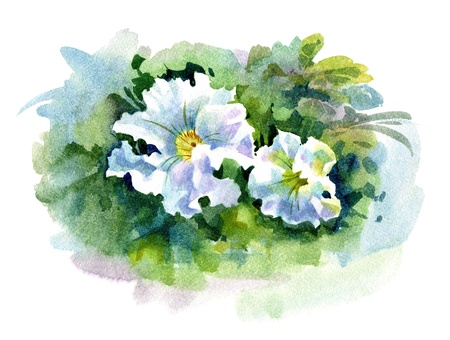 tone shading: Watercolor Flower Collection: Petunia