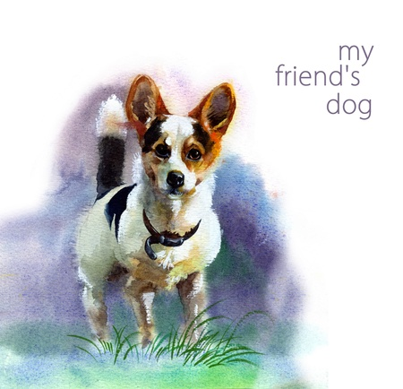 Animal da aguarela Dog Cole