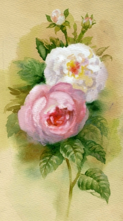 Watercolor Flower Collection  Roses