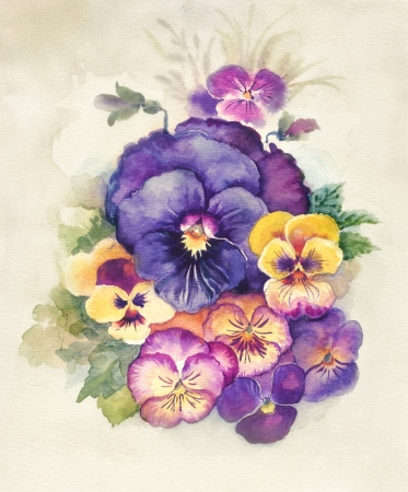 Watercolor Flora Collection  Viola Tricolor