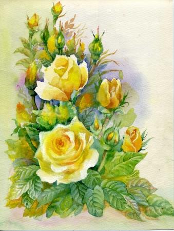 Aguarela da flor da cole��o Rosas