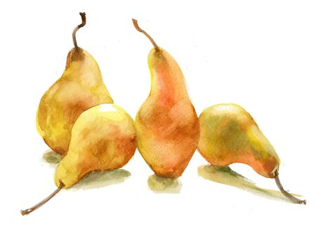 yellow pears photo