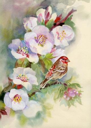 �rvore florida coberto de flores