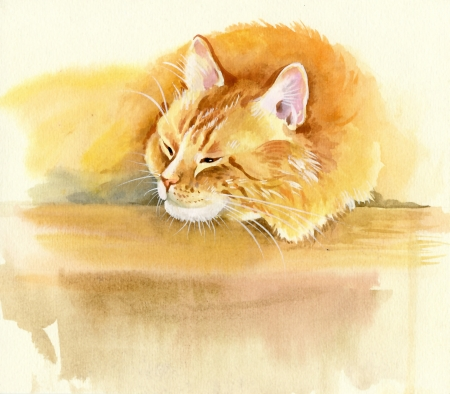 tone shading: Animal Collection  Cat