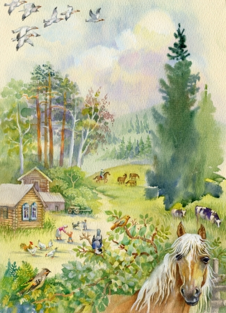Rural landscape with a horse photo