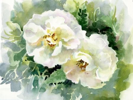 Watercolor Flower Collection  Roses photo
