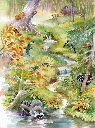 Cachoeira na floresta profunda Banco de Imagens