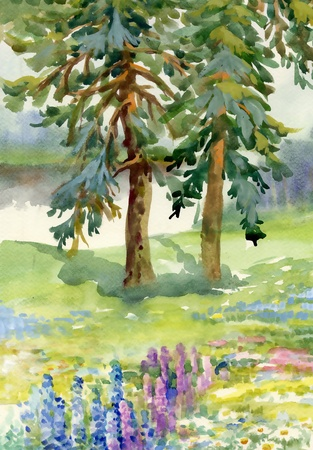 Landscape with pine trees photo
