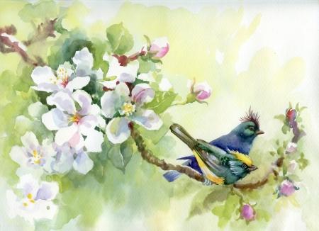 �rboles con pajaros: Pintura Birds colecci�n de primavera