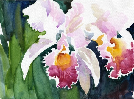 purple iris: Watercolor Flower Collection  Iris