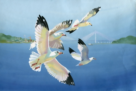 Watercolor seagulls