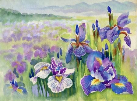 山の紫の花を春します。