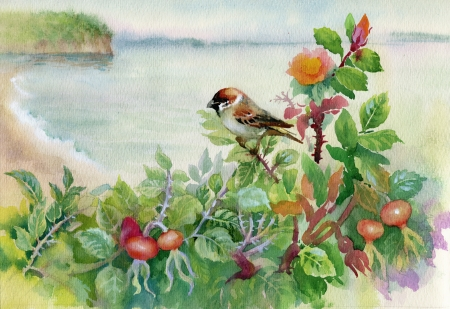 Watercolor sparrow on dog-rose