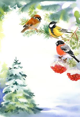 sfondo acquerello: Due uccelli e ciuffolotto sul ramo innevato