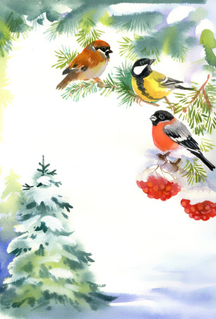watercolours: Two birds and bullfinch on the snowy branch