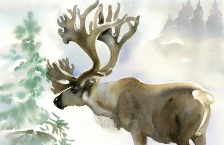 sfondo acquerello: Alce in inverno foresta