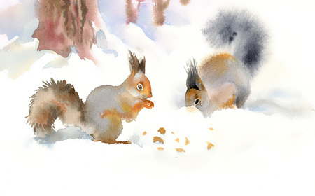 Winter squirrels eating nuts in the snow Banco de Imagens