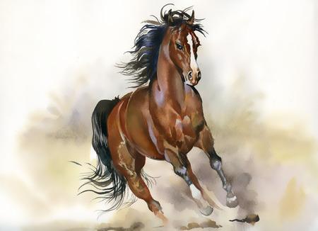 yegua: Ejecución de caballo