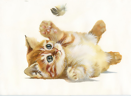 Watercolor Animal Collection  Cat and feather photo