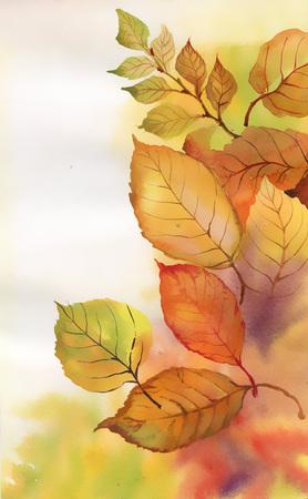 Watercolor branch photo