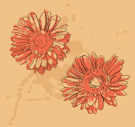 orange gerbera: two orange gerbera flowers with paint blots Illustration