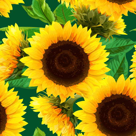 seamless pattern of sunflowers with green leaves