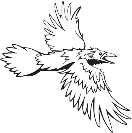 corvus: sketch of flying raven, black and white, outline Illustration