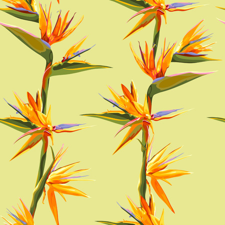 strelitzia: seamless patter of strelitzia flowers on a bench with leaves Illustration