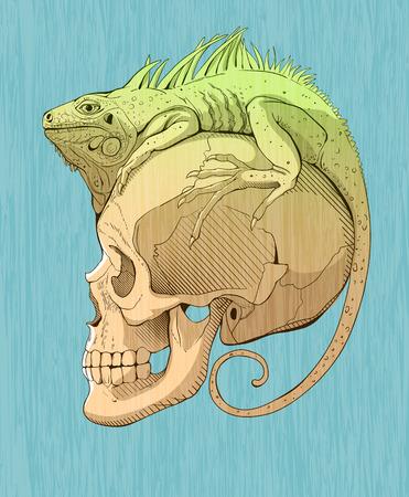 large skull: colorfull  illustration with iguana and scull Illustration
