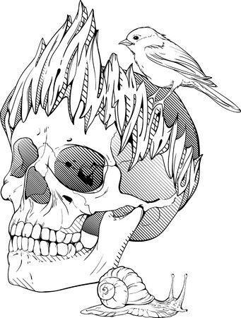 dragon tattoo: black and white illustration with skull, bird and snail