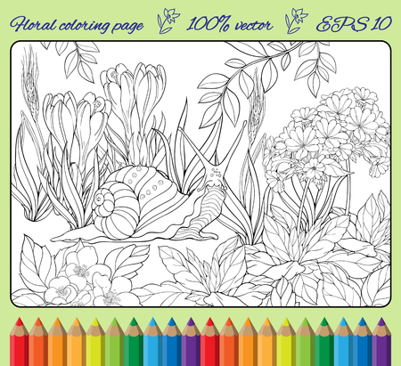 crawling: coloring page of close-up view of snail crawling through  grass 2