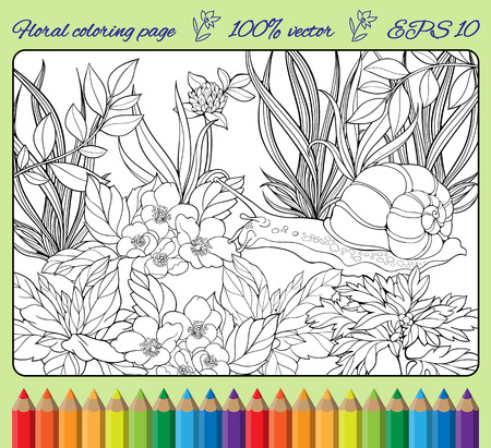 coloring page of close-up view of snail crawling through  grass Vectores