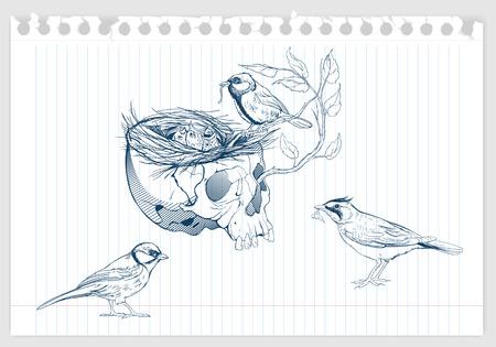 Zeichnung der Vögel ein Nest in Tierschädel machen