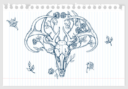 deer skull: drawing of deer skull with horns decorated with flowers